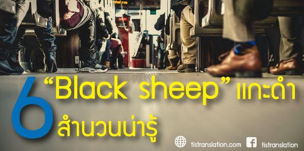 Black sheep เเกะดำกับ 6 สำนวนน่ารู้